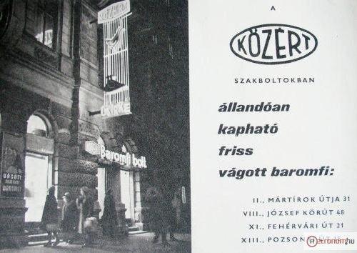 1968_kozert.preview